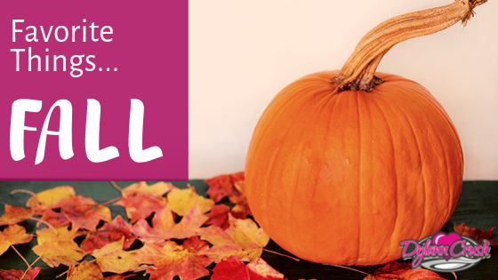 Read more about the article Favorite Things – Fall Edition